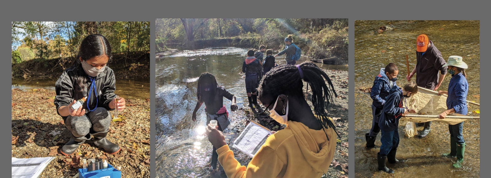 Students conducting stream research with STEM Alliance grant